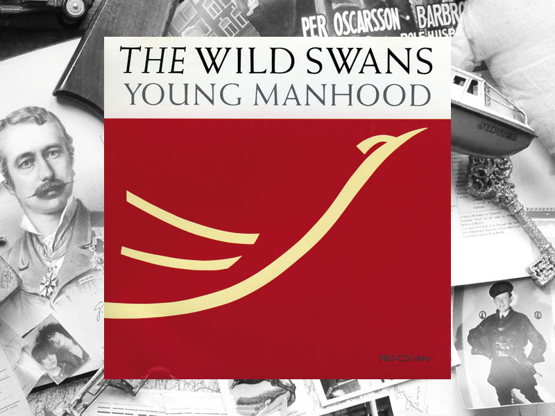 The Wild Swans : Young Manhood : CD Promo