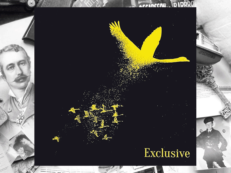 The Wild Swans/Care - Exclusive 12""